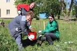 Волонтеры УАЗа приняли участие в корпоративной «Зеленой волне»