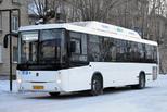 Штрафы за качество транспортного обслуживания