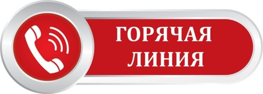Горячая линия: специалисты администрации Каменска-Уральского отвечают на  вопросы горожан
