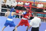 В Каменск-Уральский съехались сильнейшие молодые боксеры Урала