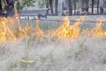Сухая трава − это опасно!