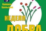 Горожане снова включаются в общероссийскую добровольческую акцию