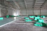 Ледовая арена: первый этап завершен