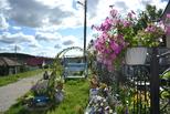 Домик окнами с сад. В Синарском районе прошел смотр-конкурс лучших клумб, дворов и подворий