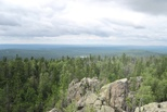 Накануне Дня лесника Управление Росреестра по Свердловской области сердечно поздравляет тех, кто посвятил свою жизнь лесу!
