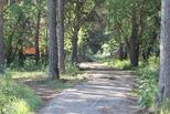 В Каменске дан старт благоустроительным работам на территории городского парка