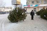 Елочные базары начнут работать в Каменске с 21 декабря