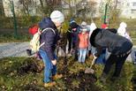 Детский сад – зеленый сад