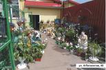 В Красногорском районе выбрали лучший двор